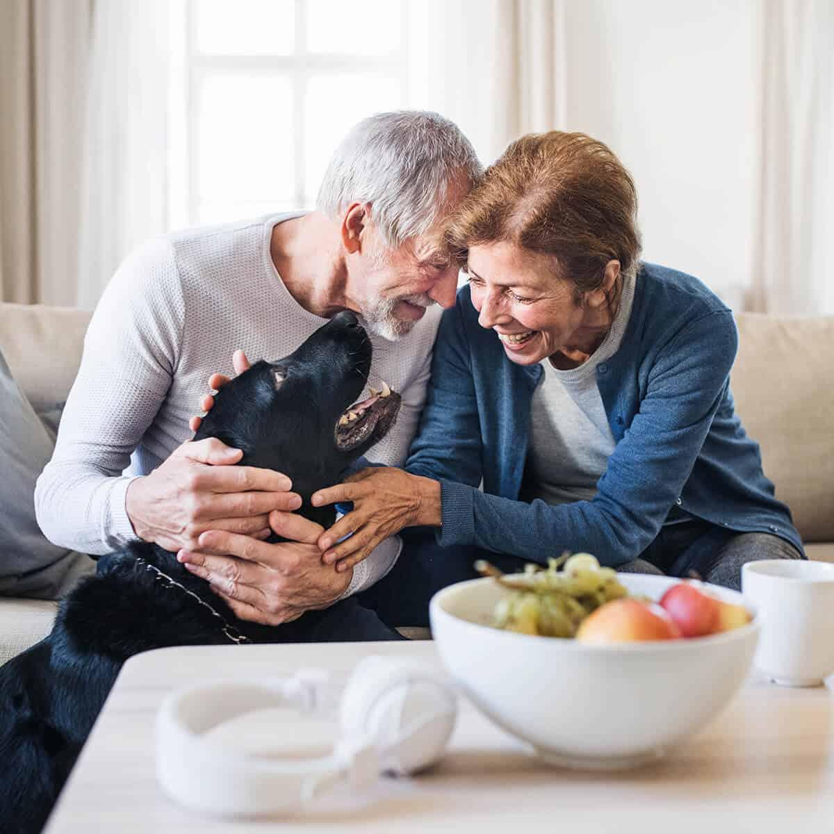 Senior Couple Petting Dog